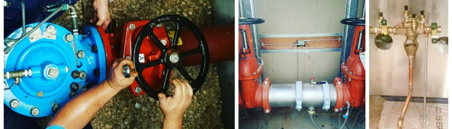 backflow testing Collage